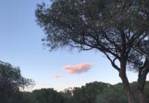 la nube, sesgo